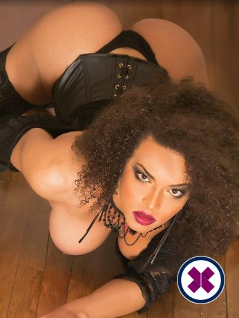 Milla TS is a top quality American Escort in Stockholm