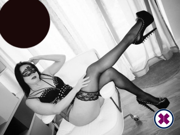 Mistress Poshtotti  is a high class English Escort Pembrokeshire