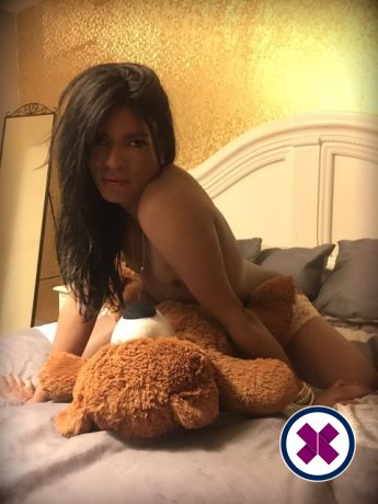 TV Jasmine XL is a hot and horny Puerto Rican Escort from London