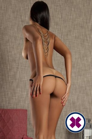Nicole is a high class British Escort Brighton