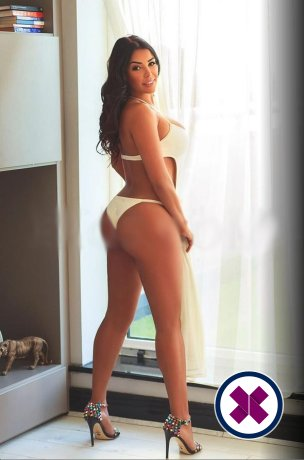 Lilliane is a top quality Colombian Escort in Westminster