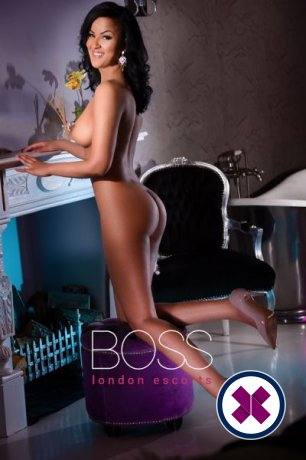 Michele is a top quality Romanian Escort in Camden