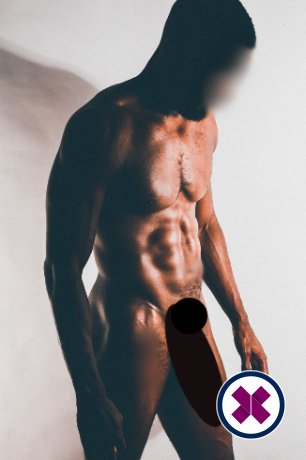 Troy Desires is a high class Jamaican Escort Westminster